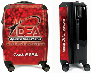 DEA-suitcase-sample-1[1]
